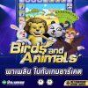 รีวิวเกมสล็อต Birds and Animals